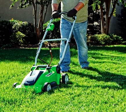 greenworks lawn mower 25142